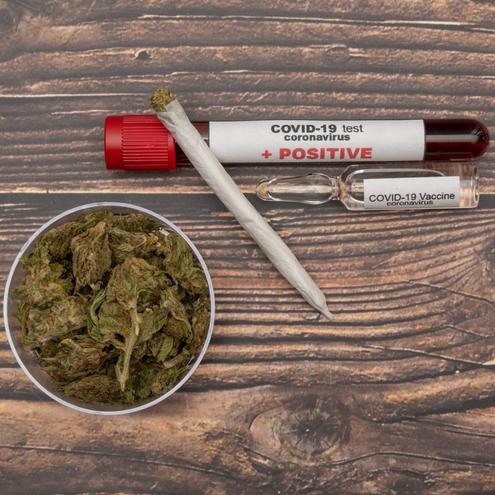 The ABC's of Cannabis and Coronavirus - Mr. Cannabis Law